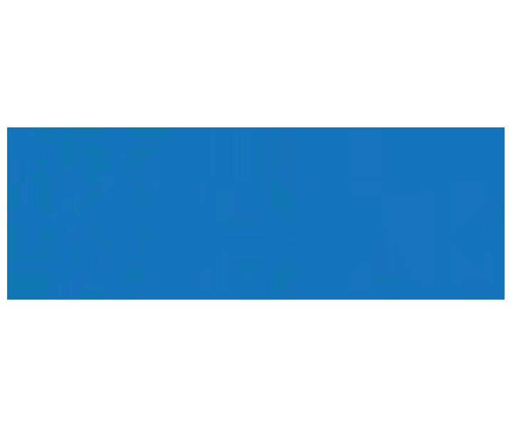 Digital Library Federation program (DFL)
